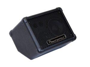 Portable 50-Watt Personal Monitor